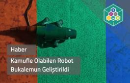 Kamufle Olabilen Robot Bukalemun Geliştirildi